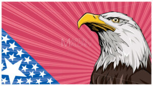 Bald Eagle Background - Martin Malchev