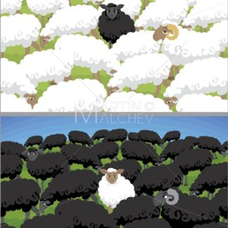 Black Sheep - Martin Malchev