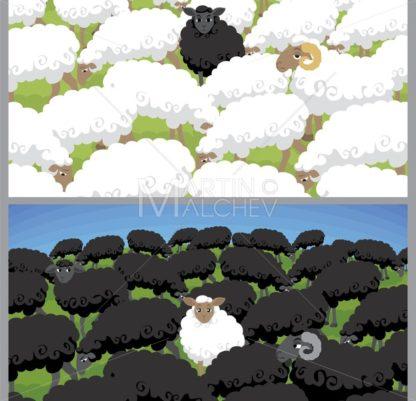 Black Sheep - Martin Malchev