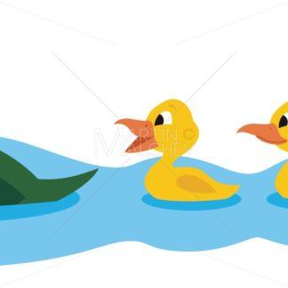 Ducks - Martin Malchev
