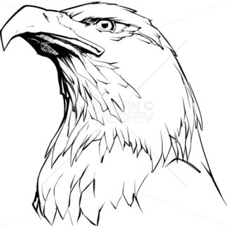 Eagle on White - Martin Malchev