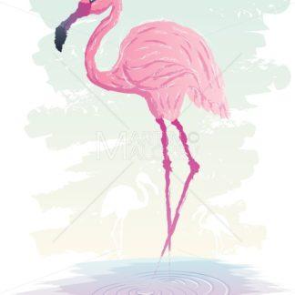 Flamingo - Martin Malchev