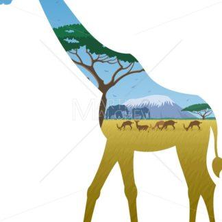 Giraffe Landscape - Martin Malchev