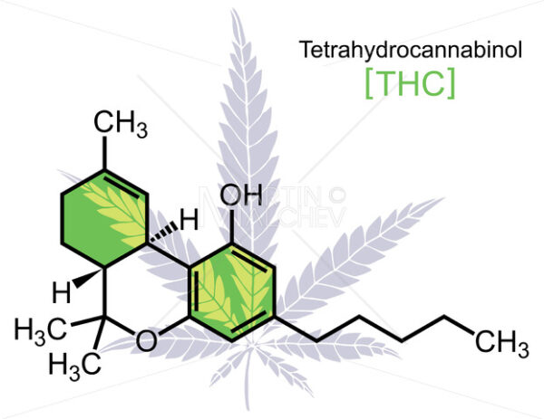 THC Molecule on White - Martin Malchev