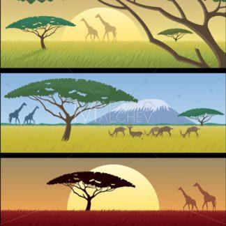Africa Landscapes - Martin Malchev