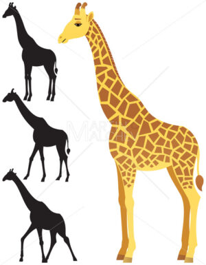 Giraffe - Martin Malchev
