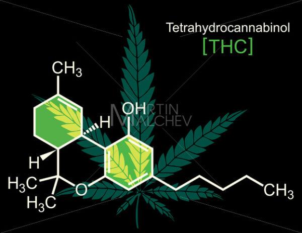 THC Molecule on Black - Martin Malchev