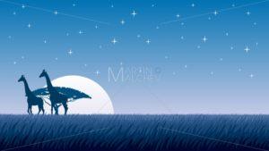 African Landscape Night - Martin Malchev